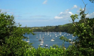 Homelands - Holiday Cottage in Dittisham